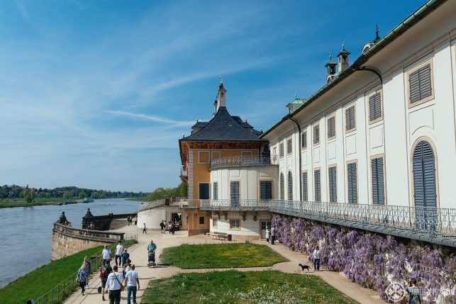 the royal landing stage at pillnitz castle dresden germany