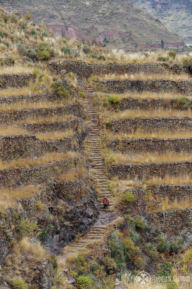 View of the well maintained trail leading up to the Pisac ruins