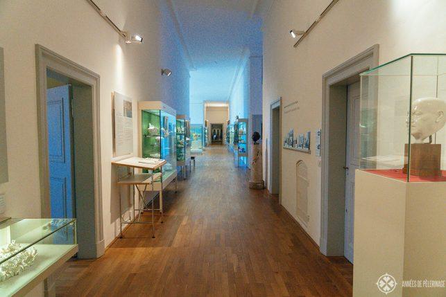The Nymphenburg Porcelain museum