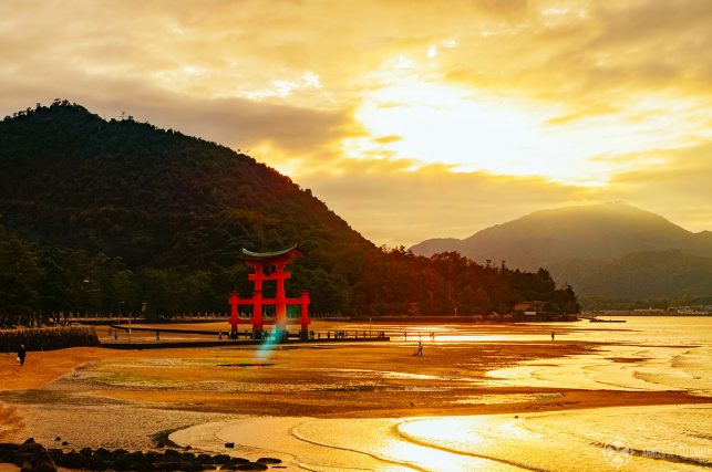 The torii of the Itsukushima shrine miyajima japan low tide