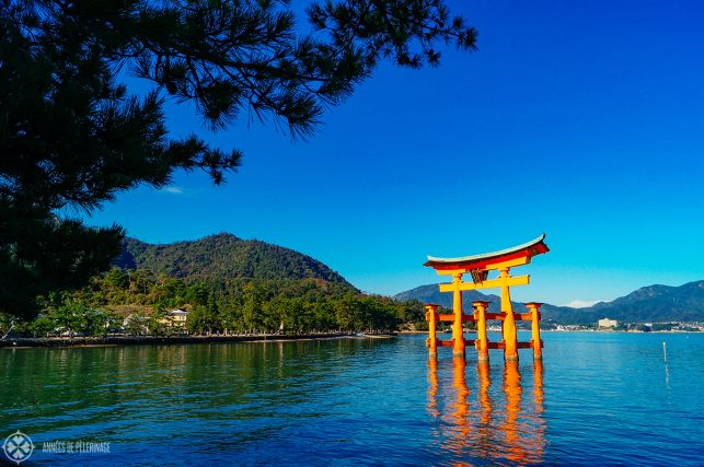 Another view of the magnificent torii  on Miyajima island.
