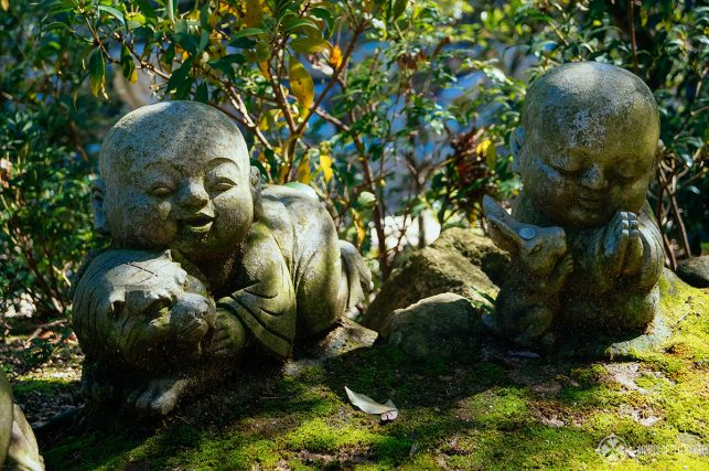 The moss covered Buddhist statues at Daisho-in