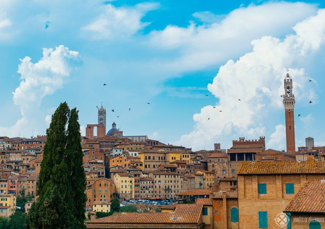 View of the old town of Siena with the cathedral on top