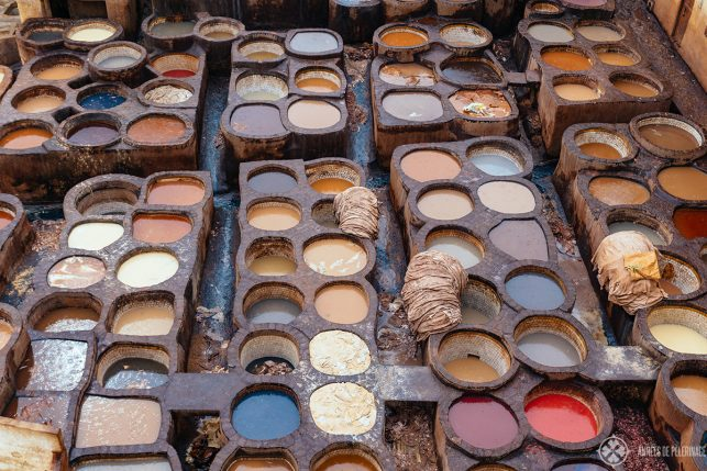 The colorful vats of the Chouara Tannery - probably the best place to visit in Fez