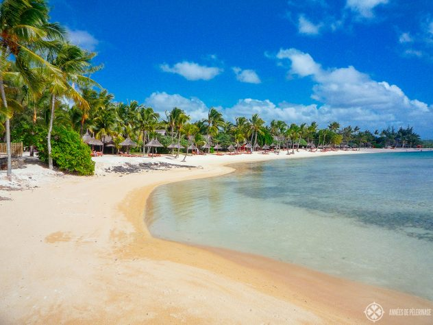 A typical beach in Mauritius with huge palm trees. This one is located at the Prince Maurice luxury hotel.