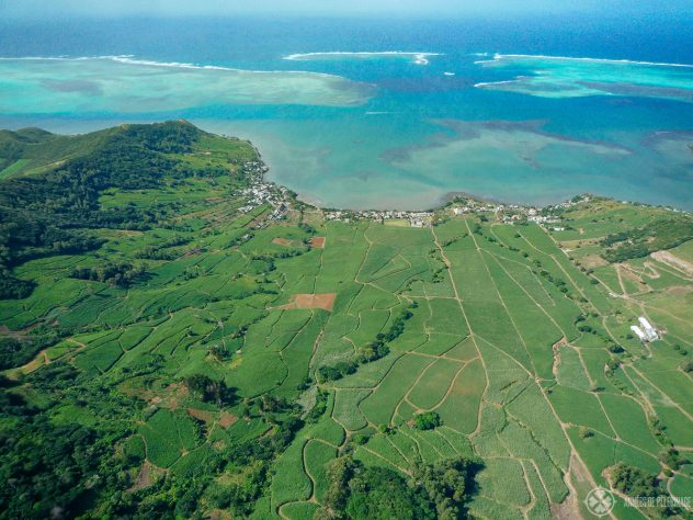Sugar cane fields near the coast of Mauritius from above