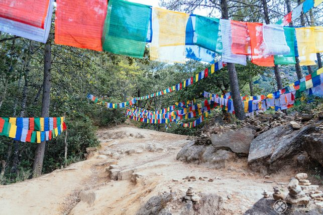 Prayer flags adorn most parts of the climb up to the Tiger's Nest