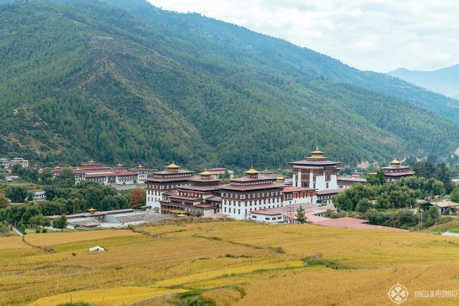 Rice fields in front of Taschicho Dzong in Thimphu, Bhutan