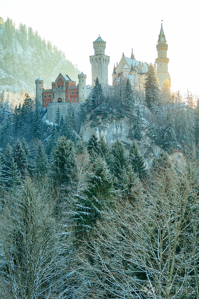 Neuschwanstein castle in winter in Füssen, Germany