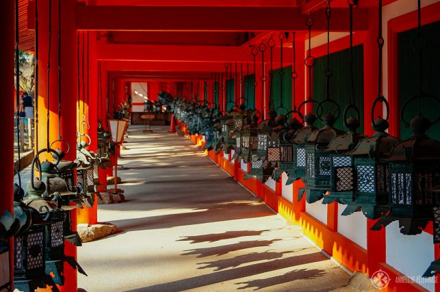 The bronze lanterns at Kasuga Taisha Temple in Nara Japan