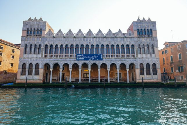 The marble facade of the Museo di Storia Naturale at the Grand Canal features two rows of arched windows and two towers on each side