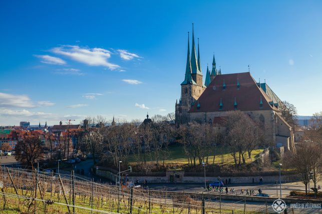 St. Severin church in Erfurt Germany with wineyards in the foreground