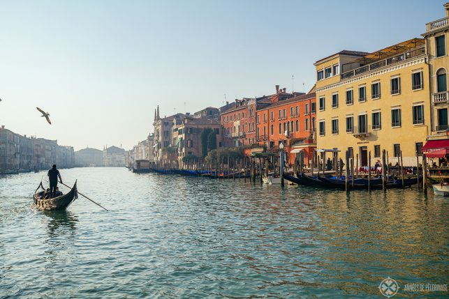 A traghetti gondola on the canal grande