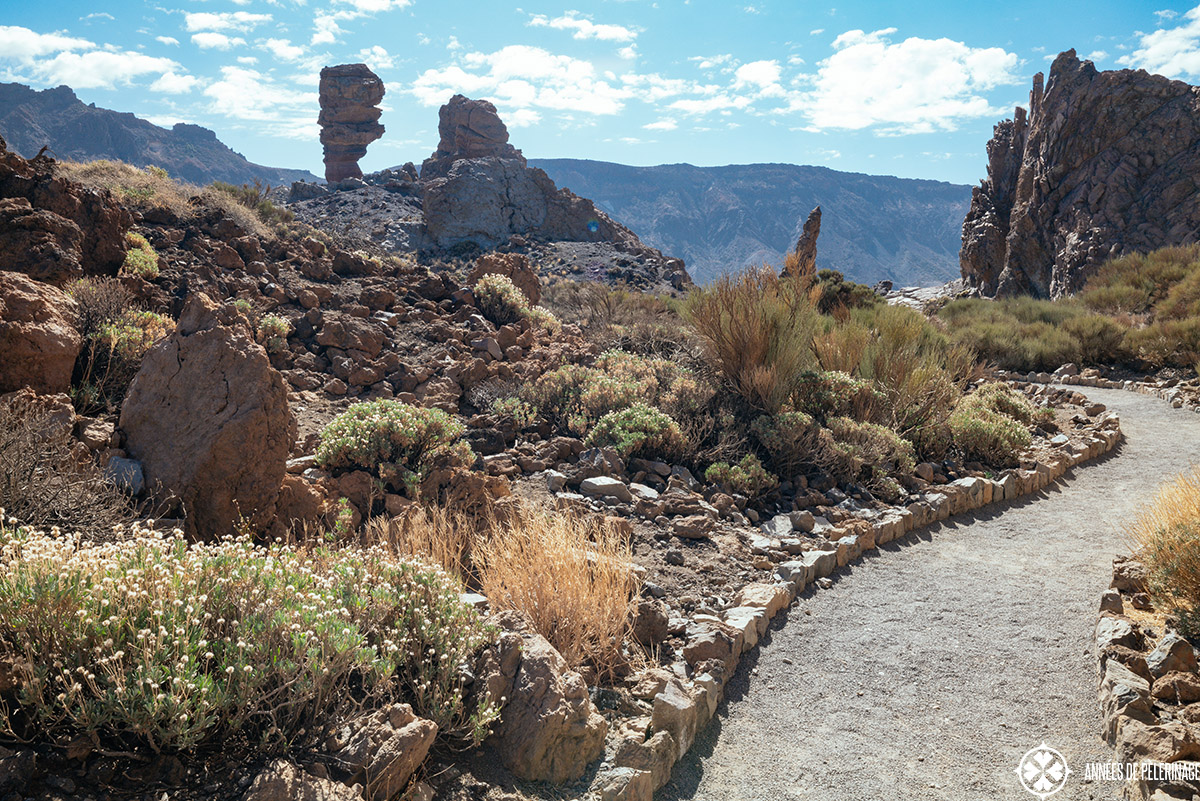 walkways through teide national park with quite interesting rock fromations on the side